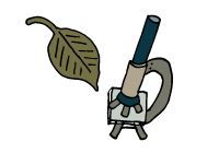 ico-prirodovedec
